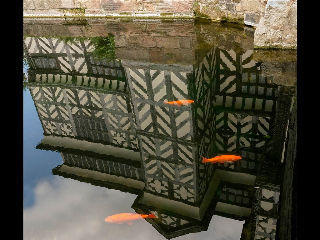 The Moat (C) Sally Anderson