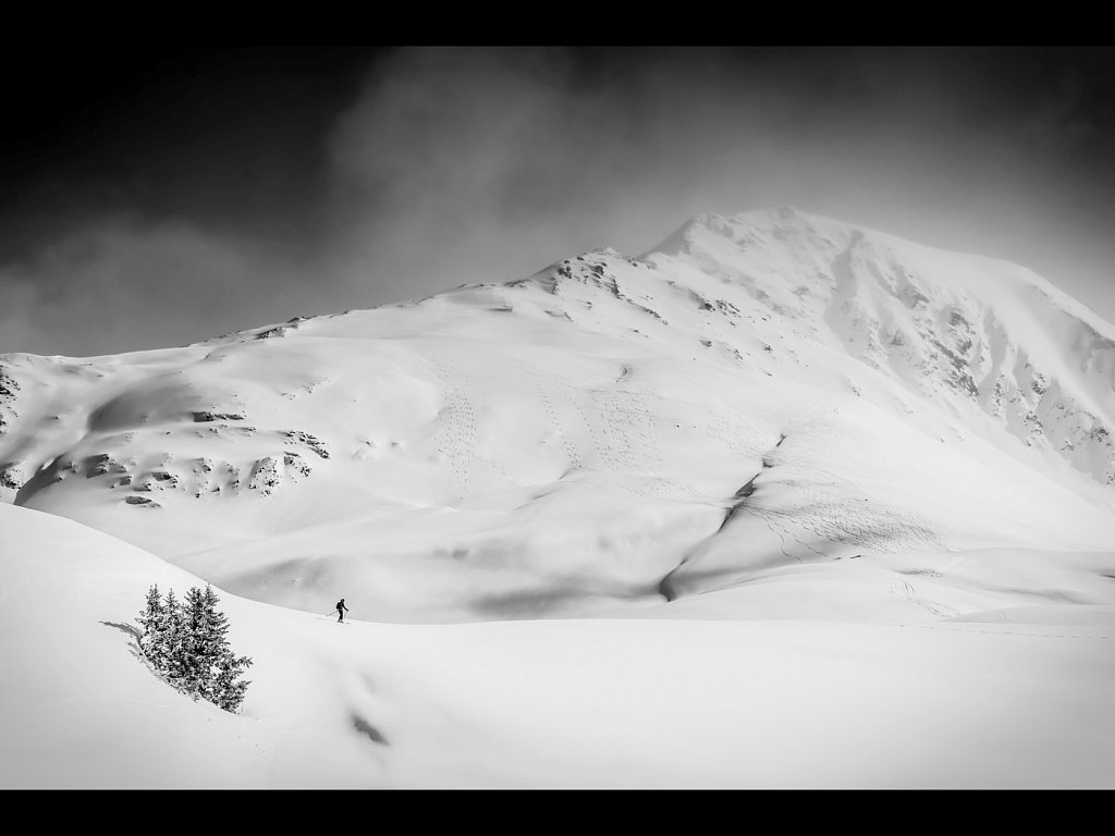 All Alone (c) Allan Hartley [Highly Commended]